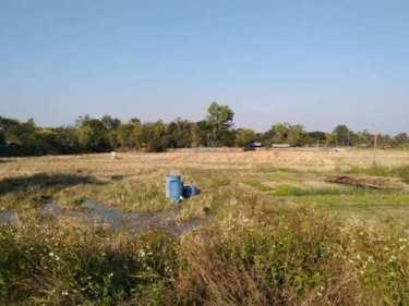 ขายที่นา/ที่ดิน/ที่ทำการเกษตร จังหวัดลำปาง สามารถใช้ทำนา หรือ การเกษตร และสร้างสิ่งปลูกสร้างอื่นๆได้